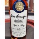 Delord Bas Armagnac Hors d'Age